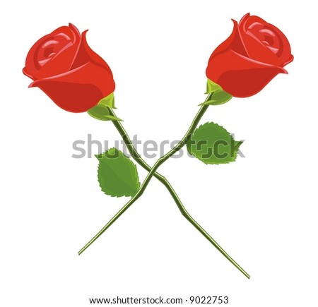 rose red - stock vector