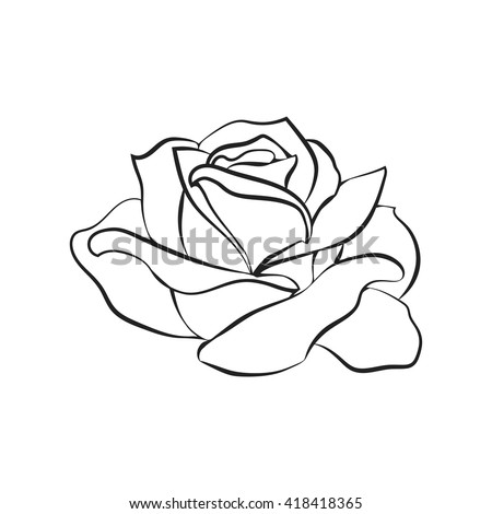 Rose Sketch Black Outline On White Stock Vector 418418365