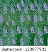 rosemary seamless pattern - stock vector