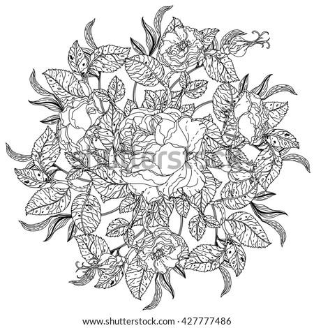 Vintage Elegant Flowers Black White Vector Stock Vector