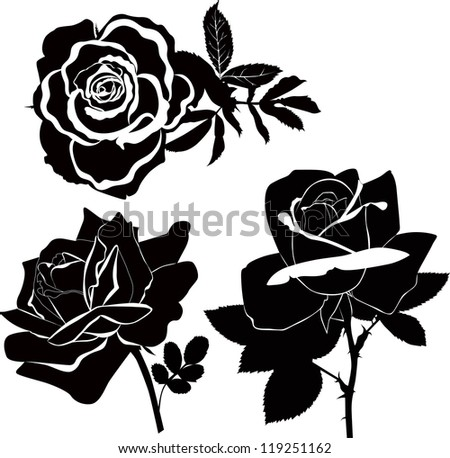 Roses flowers it is isolated a holiday - stock vector