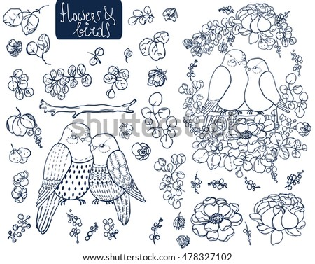 Roses, leaves and bird. Doodle illustration over white background. Collection of beautiful floral elements and birds for design