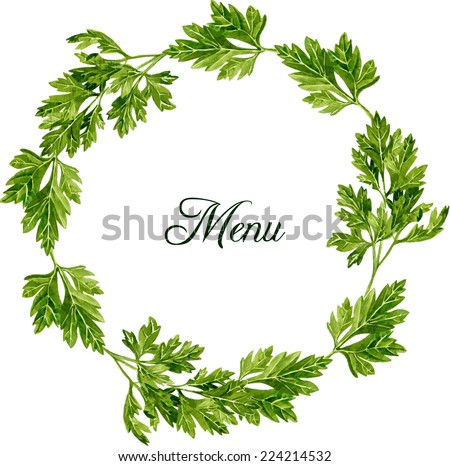 round frame with leaves of parsley drawing by watercolor on white background, hand drawn vector illustration - stock vector