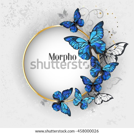 Round gold banner with blue butterflies morpho on gray textural background. Design with butterflies.