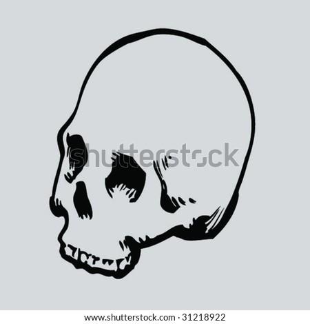 round skull - stock vector