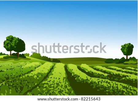 Rural landscape - stock vector