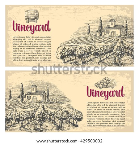 Rural landscape with villa, vineyard fields and hills. Vector engraving drawn vintage illustration. Old paper beige texture background. For label, poster, horizontal banner. - stock vector