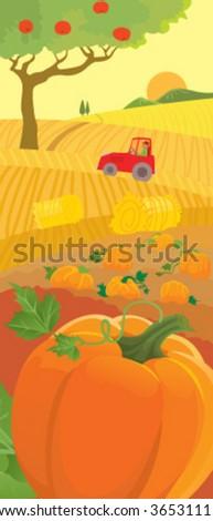 Rural scene of harvesting - stock vector