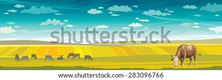 Rural summer landscape with cows and green meadow on a blue sky. Vector nature illustration. - stock vector