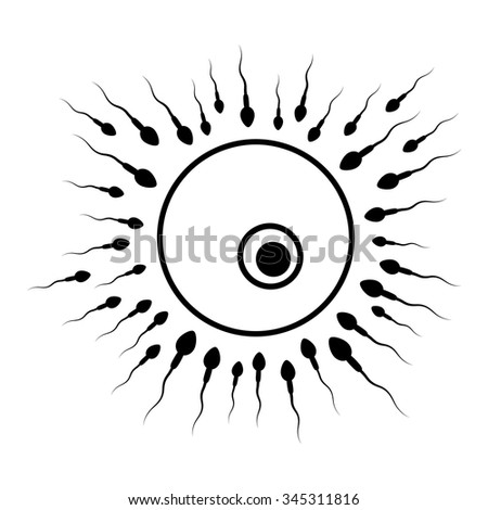 rushed sperm to the egg, fertilization background, black and white art - stock vector