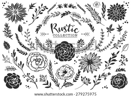 Rustic Decorative Plants And Flowers Collection Hand Drawn Vintage Vector Design Elements