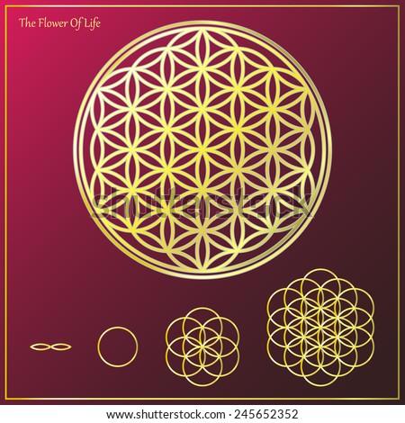 Sacred geometry, Flower of life symbol variations - stock vector