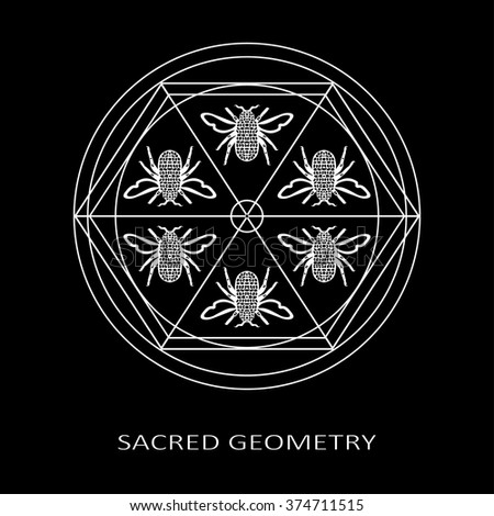 Sacred Geometry Symbol Bees Vector Bee Stock Vector 2018 374711515
