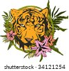 safari tiger - stock photo