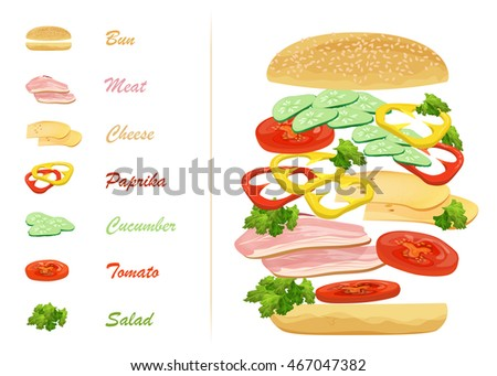 Sandwich ingredients with text infographics. Floating hamburger.