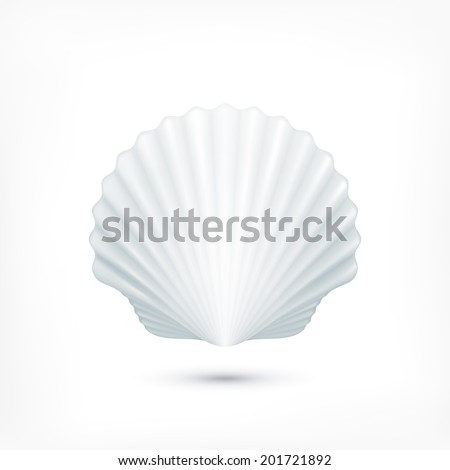 Scallop seashell of mollusks icon sign isolated. Vector illustration - stock vector