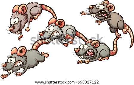 Rats Stock Images Royalty Free Images Amp Vectors