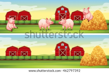 Scenes with pigs on the farm illustration