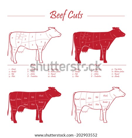 Scheme American cuts of beef - milk cow cuts elements red on white background - stock vector