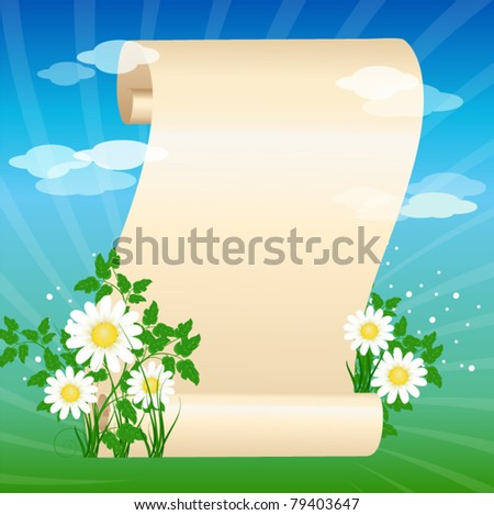 Scrolled paper on the summer background - stock vector