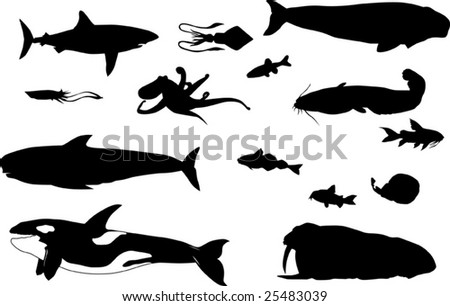 sea animals silhouettes collection isolated on white background - stock vector