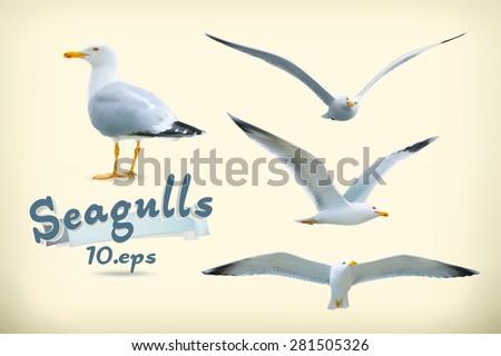 Sea gulls vector icon set - stock vector
