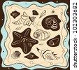 sea shells background, vector illustration - stock vector