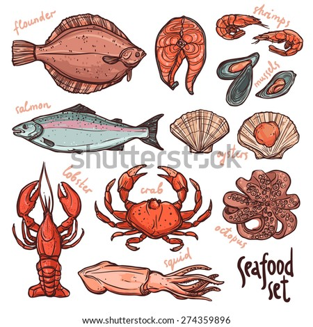Seafood collection, hand drawn color illustration with lobster, octopus, squid, salmon, flounder, crab, mussels, oysters and shrimps on white background - stock vector