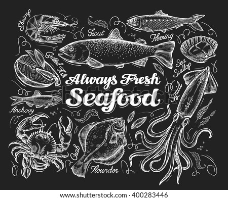 Seafood. Hand drawn sketch of a fish, trout, flounder, herring, squid, crab, anchovies, shrimp, scallop. vector illustration - stock vector