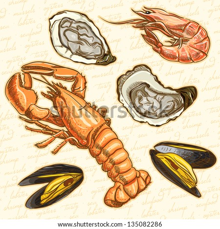 seafood. Set lobster, oysters, mussels and shrimp - stock vector
