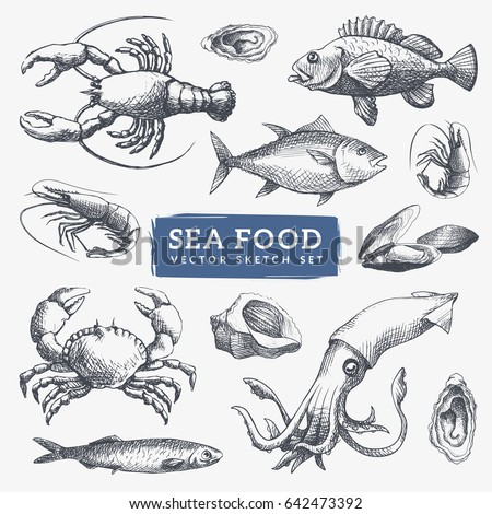 Seafood sketch illustrations set. Cool hand-drawn icons. Eps10 vector.