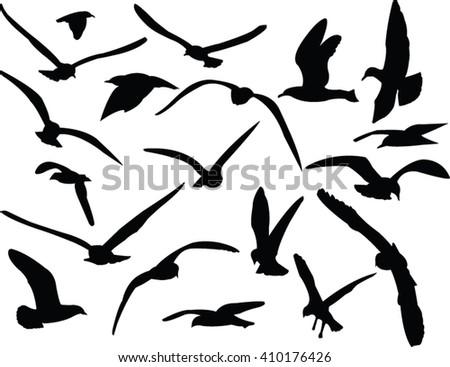 seagull collection - vector - stock vector