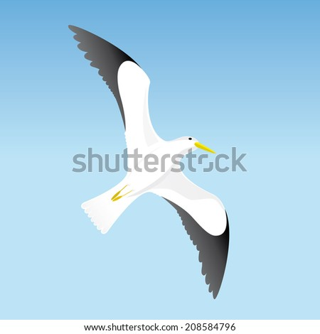 Seagull on blue sky background - stock vector