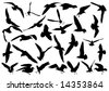 Seagulls - stock vector