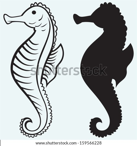 Seahorse isolated on blue background