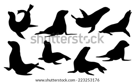 sealion silhouettes on the white background - stock vector