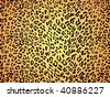 seamless animal pattern skin fur vector leopard - XXL version in jpeg available in my portfolio - stock vector
