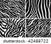 Seamless animal pattern skin fur vector zebra pack - stock vector