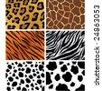 seamless animal patterns set - stock vector