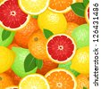 Seamless background with citrus fruits. Vector illustration. - stock photo