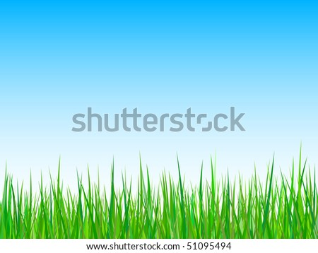 Seamless grass on a blue sky background - stock vector