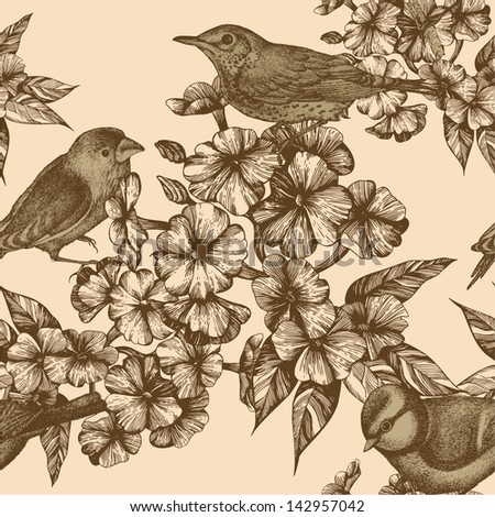 Seamless pattern with birds and flowering phloxes. Vector illustration. - stock vector