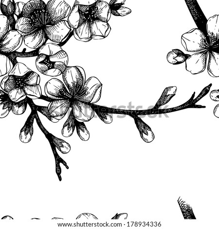 Seamless pattern with hand drawn  blooming fruit tree twig. Vector spring  background isolated on white - stock vector