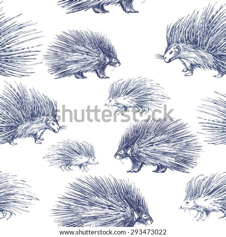 Seamless pattern with porcupines. Prickly and wild animal - stock vector