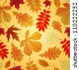 Seamless vector pattern with various leaves in autumn - stock vector