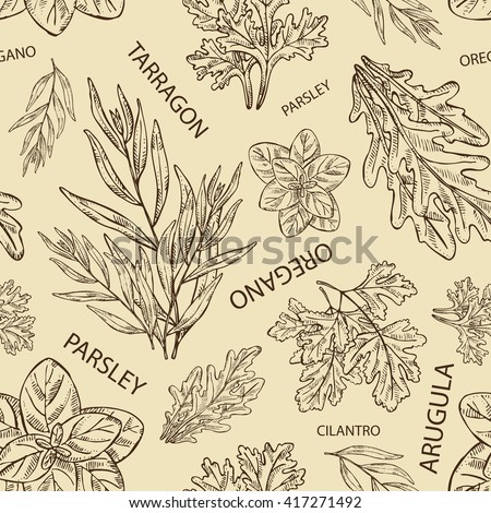 herbal medicine presentation