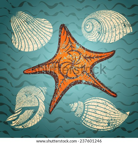 seashell and starfish set vintage vector illustration