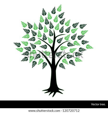 Season tree with green leaves. A vector illustration.