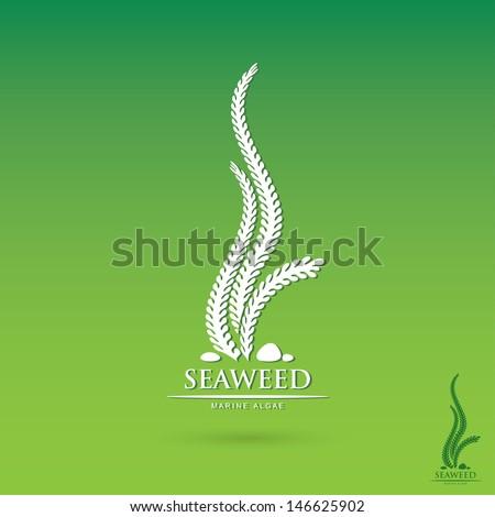 Seaweed label - vector illustration - stock vector