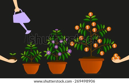 Seed selection and care that make the tree grow. Like investing starts with a good investment would be rewarding. - stock vector